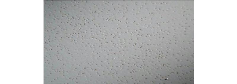 水性工业漆漆膜缩孔的原因和解决办法